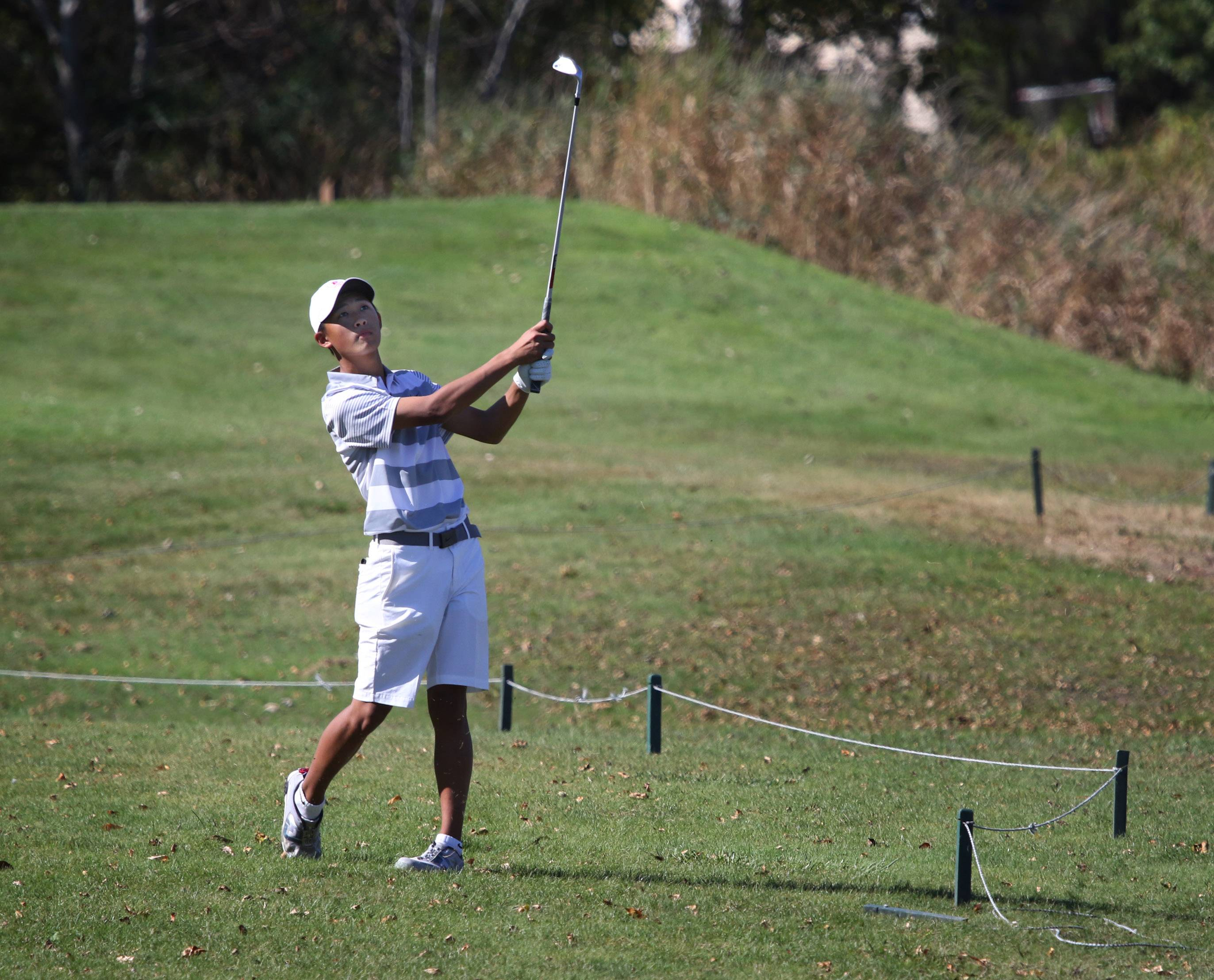 Palatine golfer Caleb Choi hits it to the green on the second hole during the Class 3A Warren boys golf sectional on Monday at Bittersweet Golf Club in Gurnee.