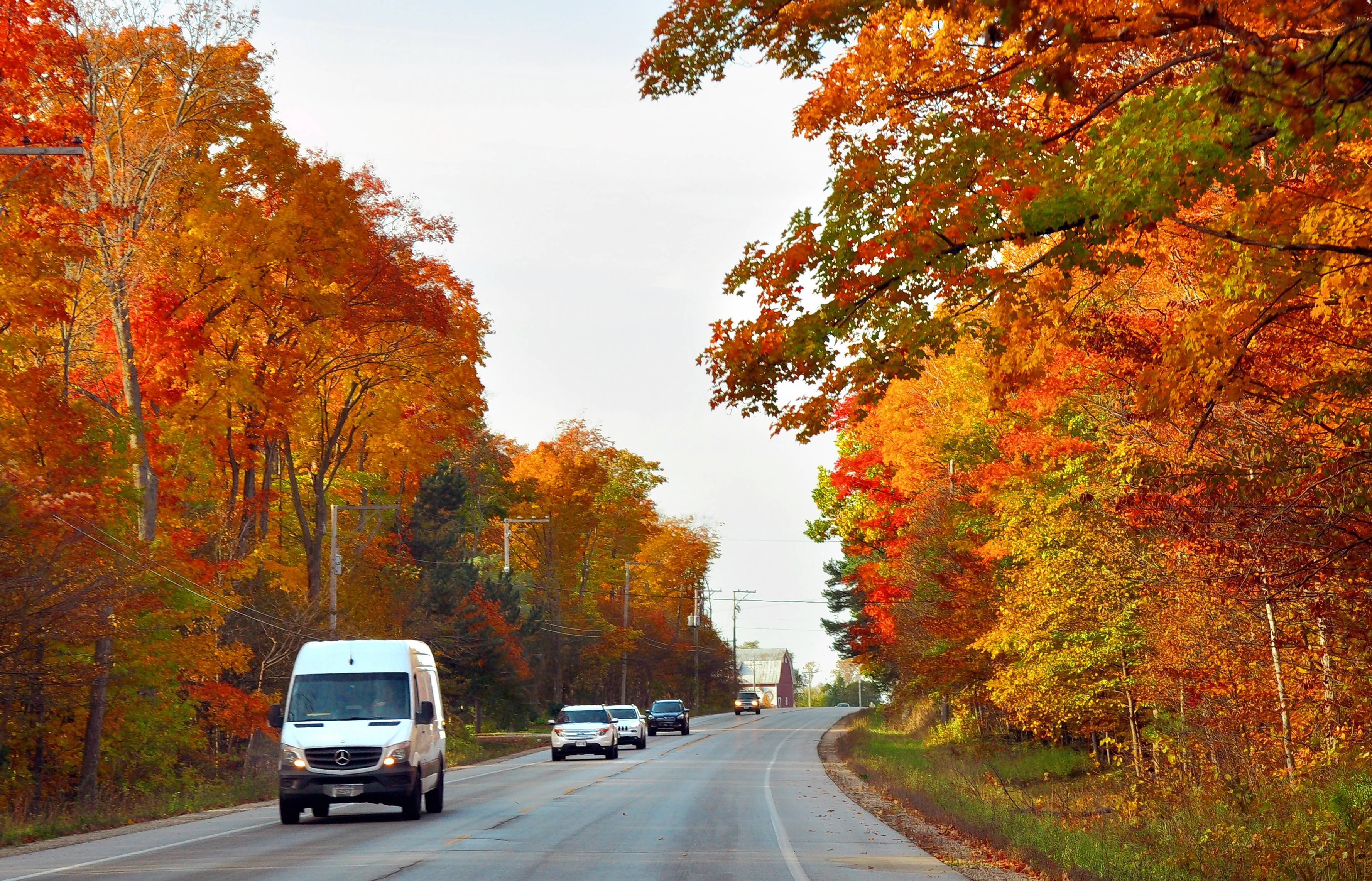 Brilliant fall foliage lines roads in Door County Wis. in October. & Fall foliage lights up Wisconsinu0027s Door County