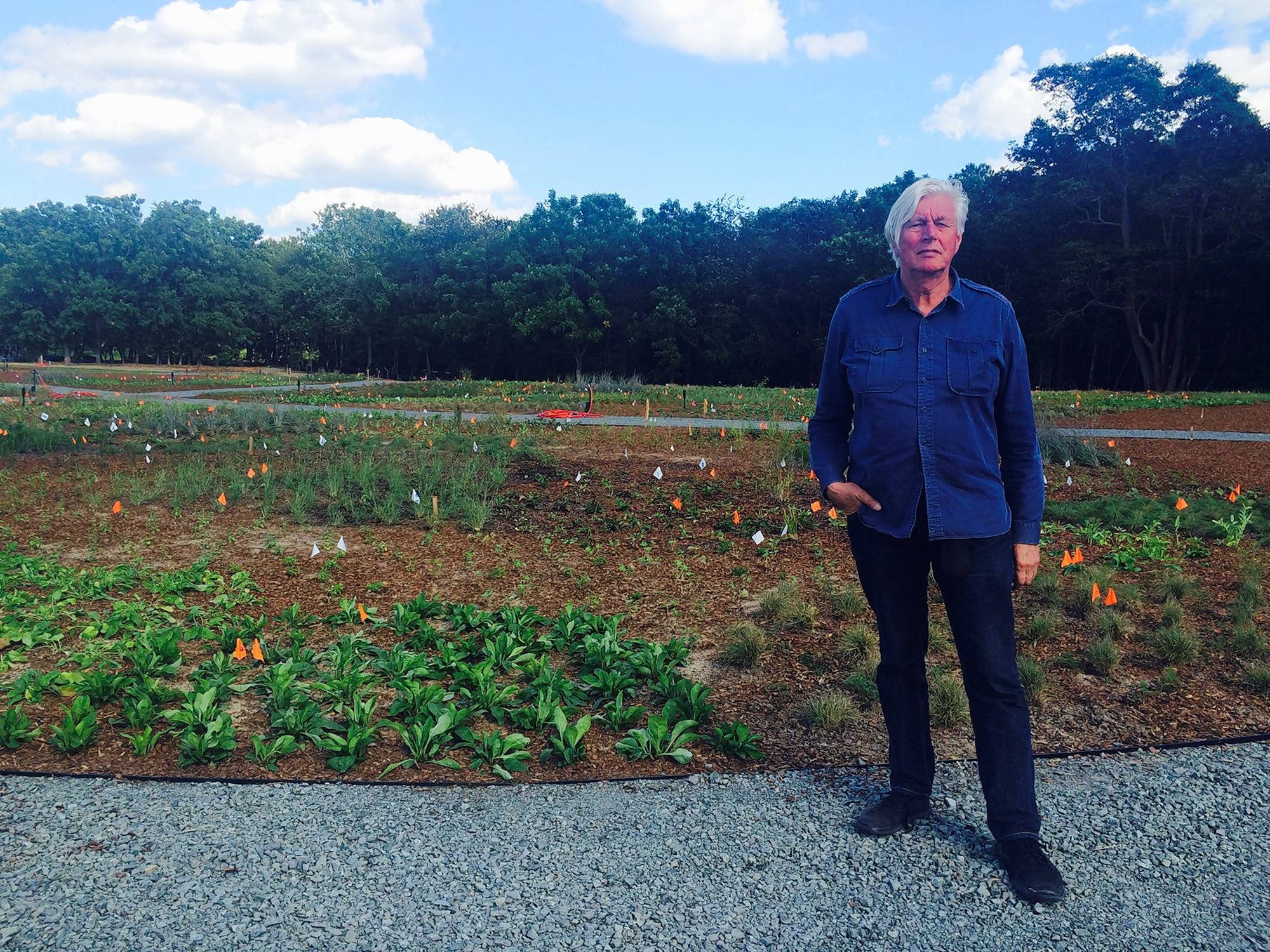 Plant designer Piet Oudolf at his newly installed meadow. Marker flags guided the complex planting schemes for which Oudolf is world famous. The creekside woodland is in the background.