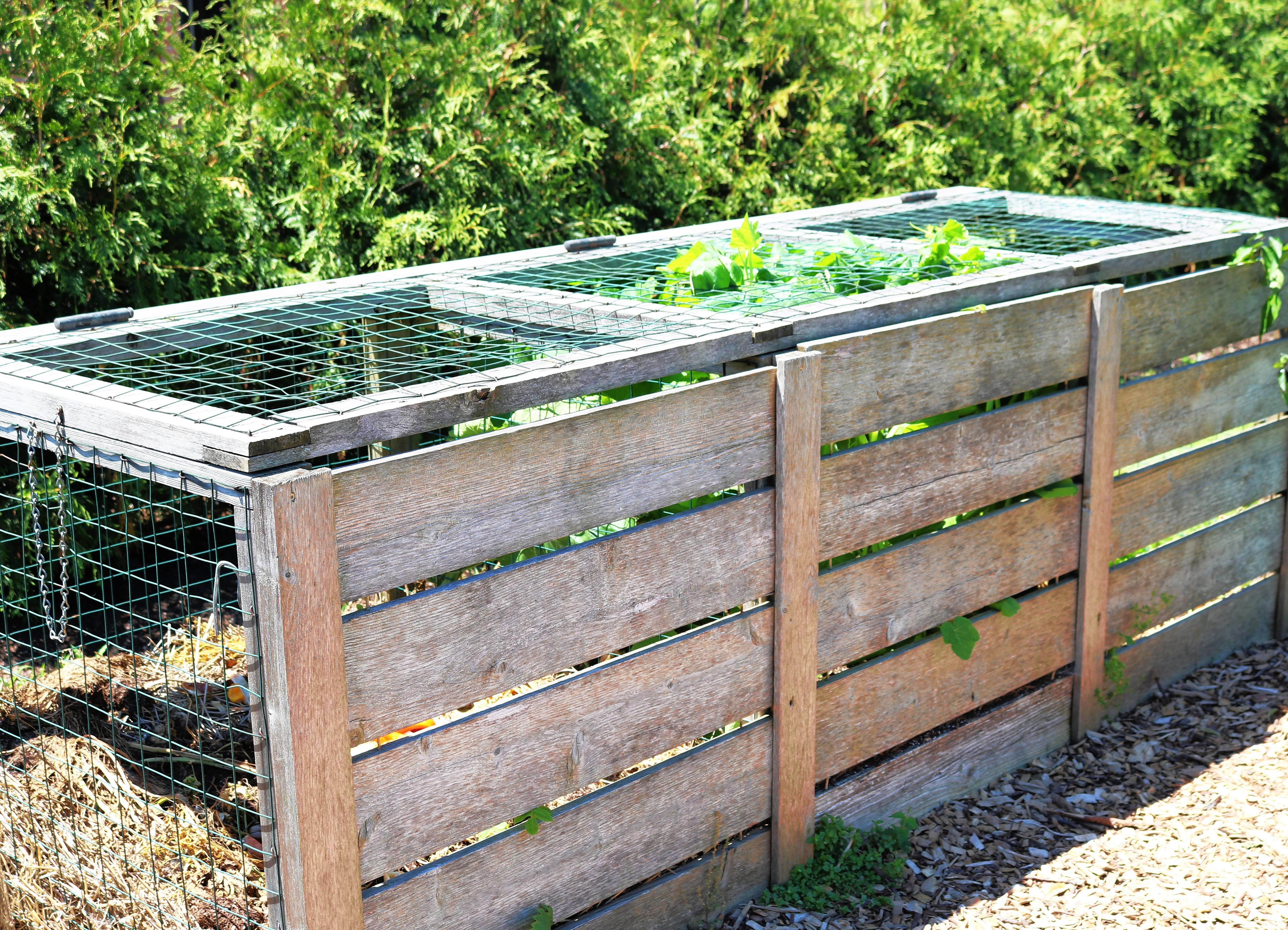 Build a compost bin or start a compost pile in an out of the way corner.