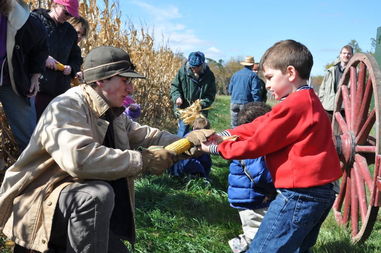 Participants of all ages can help the staff at Kline Creek Farm near West Chicago harvest corn from 10 a.m. to 4 p.m. Saturday and Sunday.