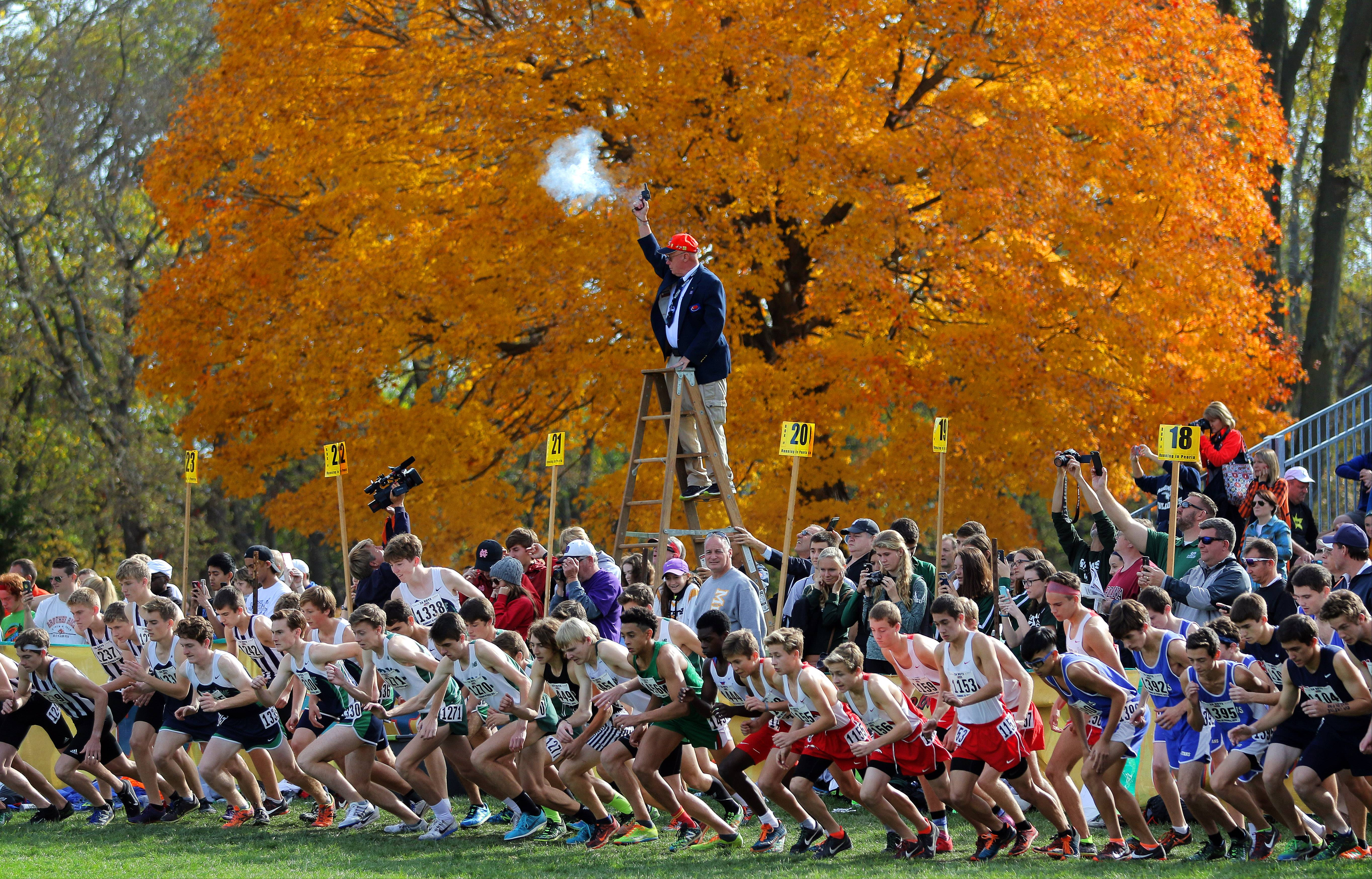 Peoria's Detweiller Park is the destination for cross country runners throughout Illinois this weekend for Saturday's state championship races.