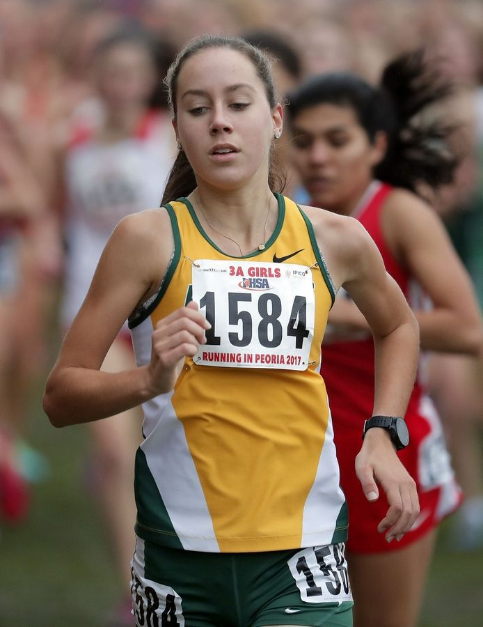 Stevenson's Natalie Sorenson (1584) runs during the Class 3A girls cross country finals Saturday in Peoria.