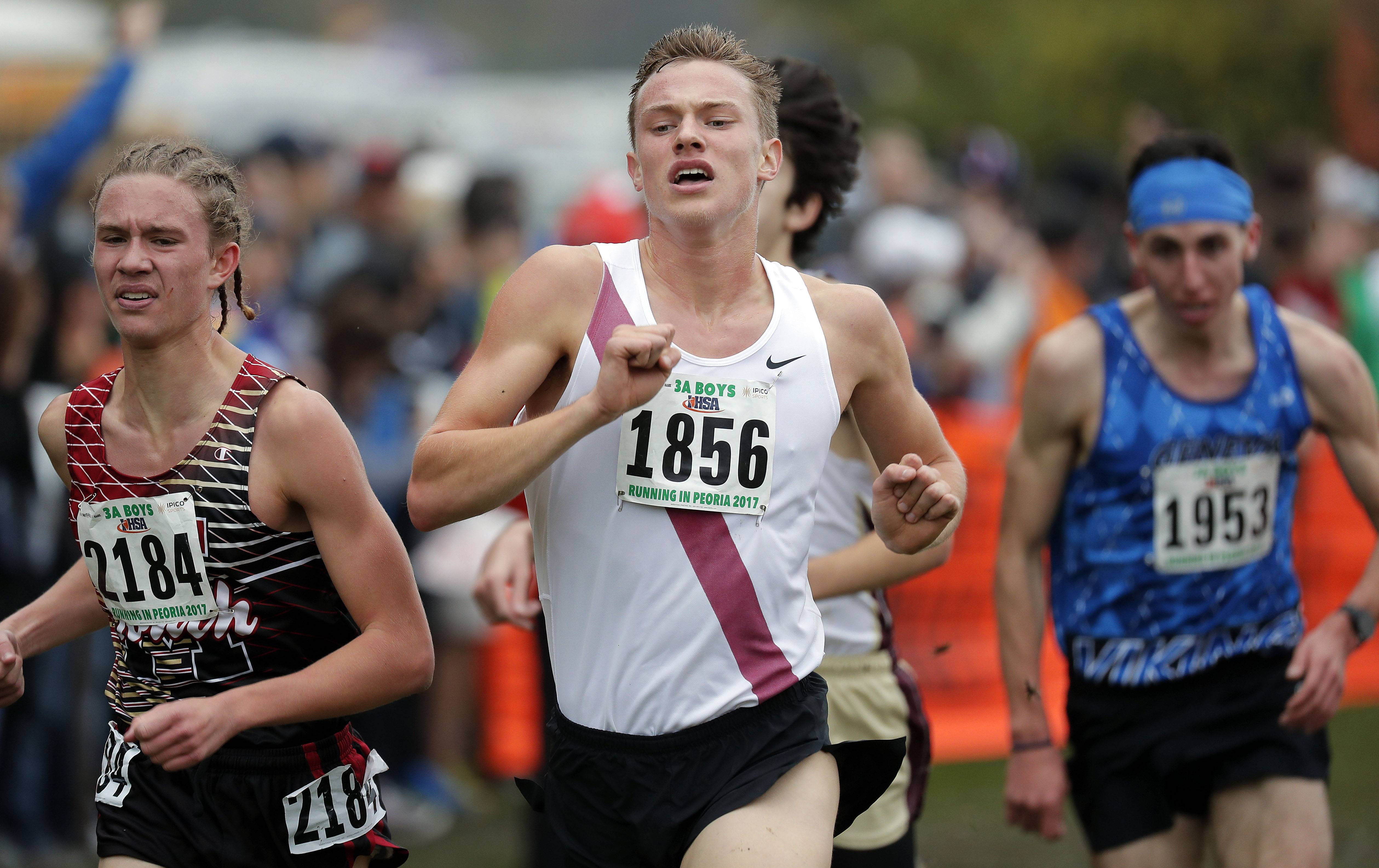 Barrington's Nick Laning powers to the finish during the boys Class 3A cross country finals Saturday in Peoria.