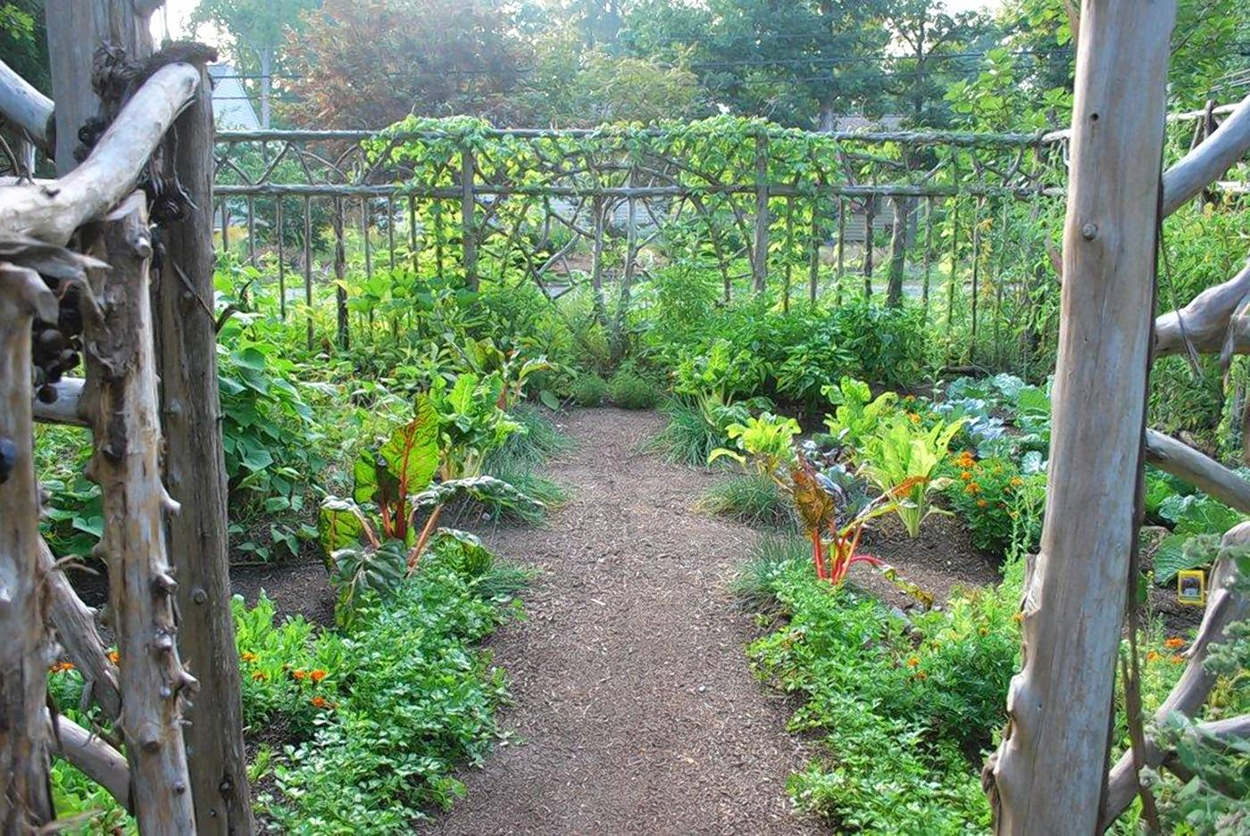 The Moitriers' vegetable garden is bounded by a handbuilt fence made from red cedar harvested by the owners.