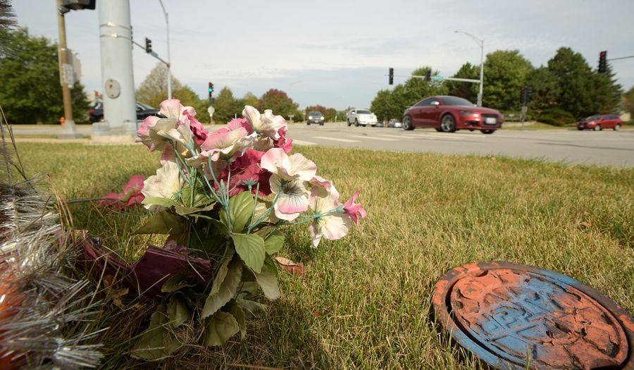 A memorial at the intersection of Book Road and Rickert Drive in Naperville were Emily Driscoll and her beloved dog Quincy were hit and killed by a driver who ran a red light in 2014.