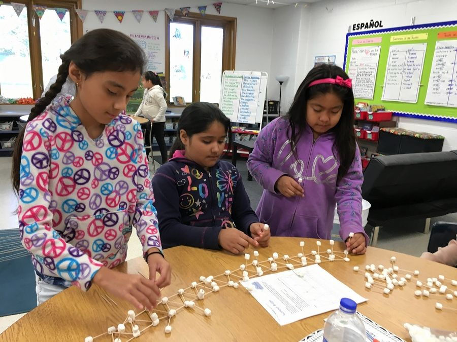 Fourth- and fifth-grade dual language program students at Juliette Low Elementary School in Arlington Heights build bridges out of toothpicks and marshmallows to learn engineering words in English.