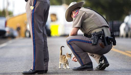 A Texas state trooper pets a cat outside the First Baptist Church in Sutherland Springs, Texas, on Monday, Nov. 6, 2017, the day after a gunman killed more than two dozen people who were attending a church service there. (Nick Wagner/Austin American-Statesman via AP)