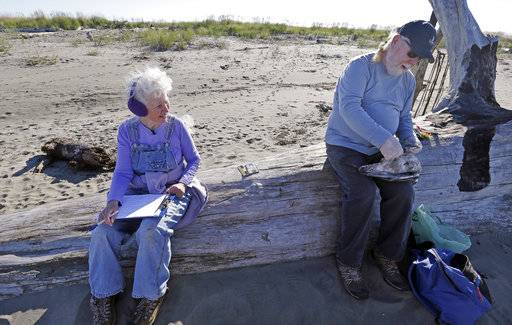 In this photo taken Sept. 28, 2017, Barb Patton, left, records information as her husband Mike Patton examines a dead bird as part of a citizen patrol surveying dead birds that wash ashore on beaches along the U.S. West Coast, in Ocean Shores, Wash. A long-running citizen monitoring program at the University of Washington is tracking dead seabirds as an indicator of the health of the coastal environment.