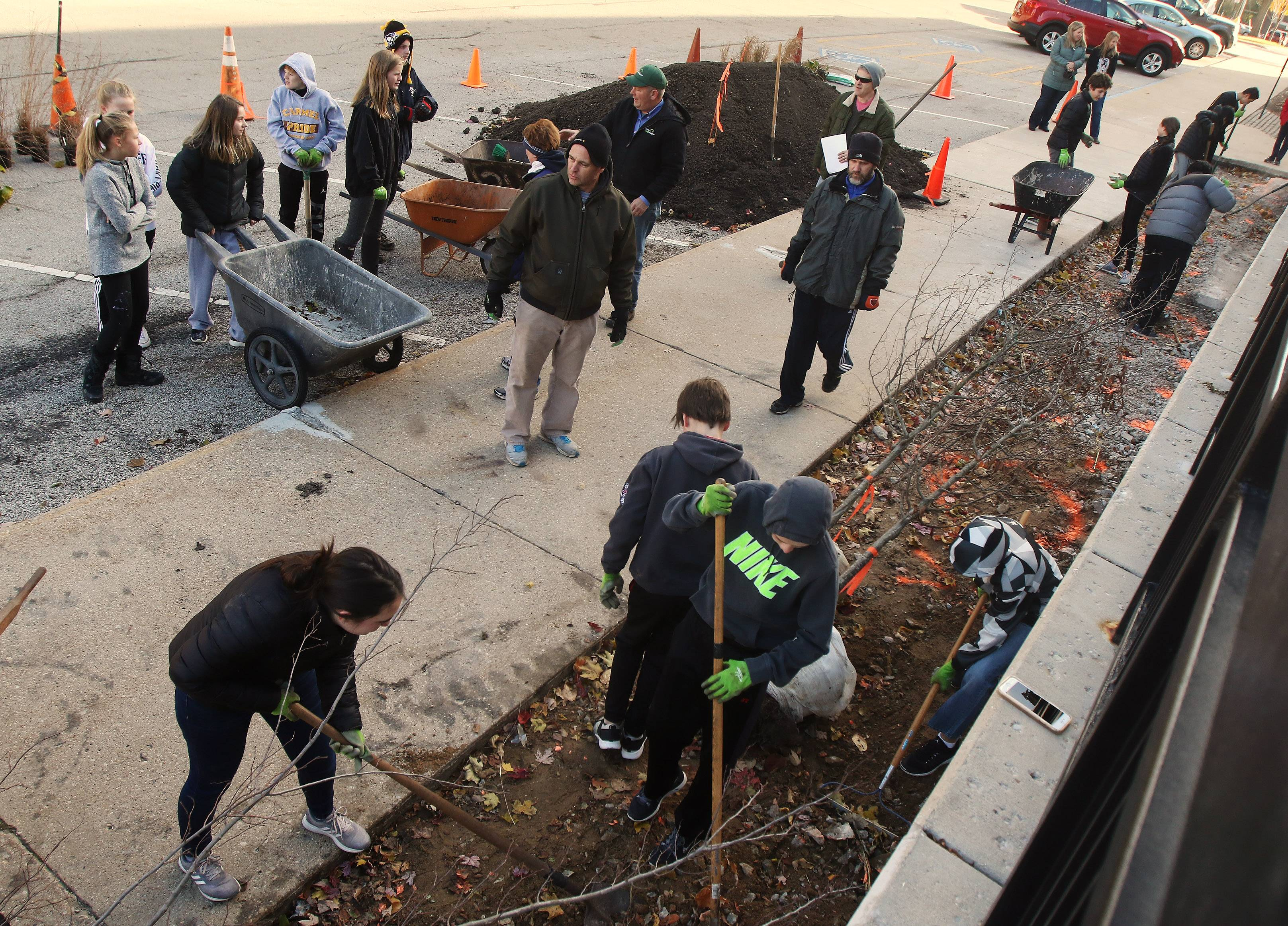Eighth graders plant trees and shrubs at St. Joseph Catholic School in Libertyville.