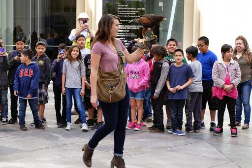 "In this April 7, 2017 photo falconer Alyssa Bordonaro walks with her Harris's Hawk named Dany as schoolchildren ask questions at the Museum of Modern Art in Los Angeles. Husband-and-wife falconers Alyssa and Mike Bordonaro are ""The Hawk Pros."" and they and their birds of prey are hired guns, brought in to scare away seagulls, pigeons and other ""pest birds"" that create nuisances and leave behind messes."