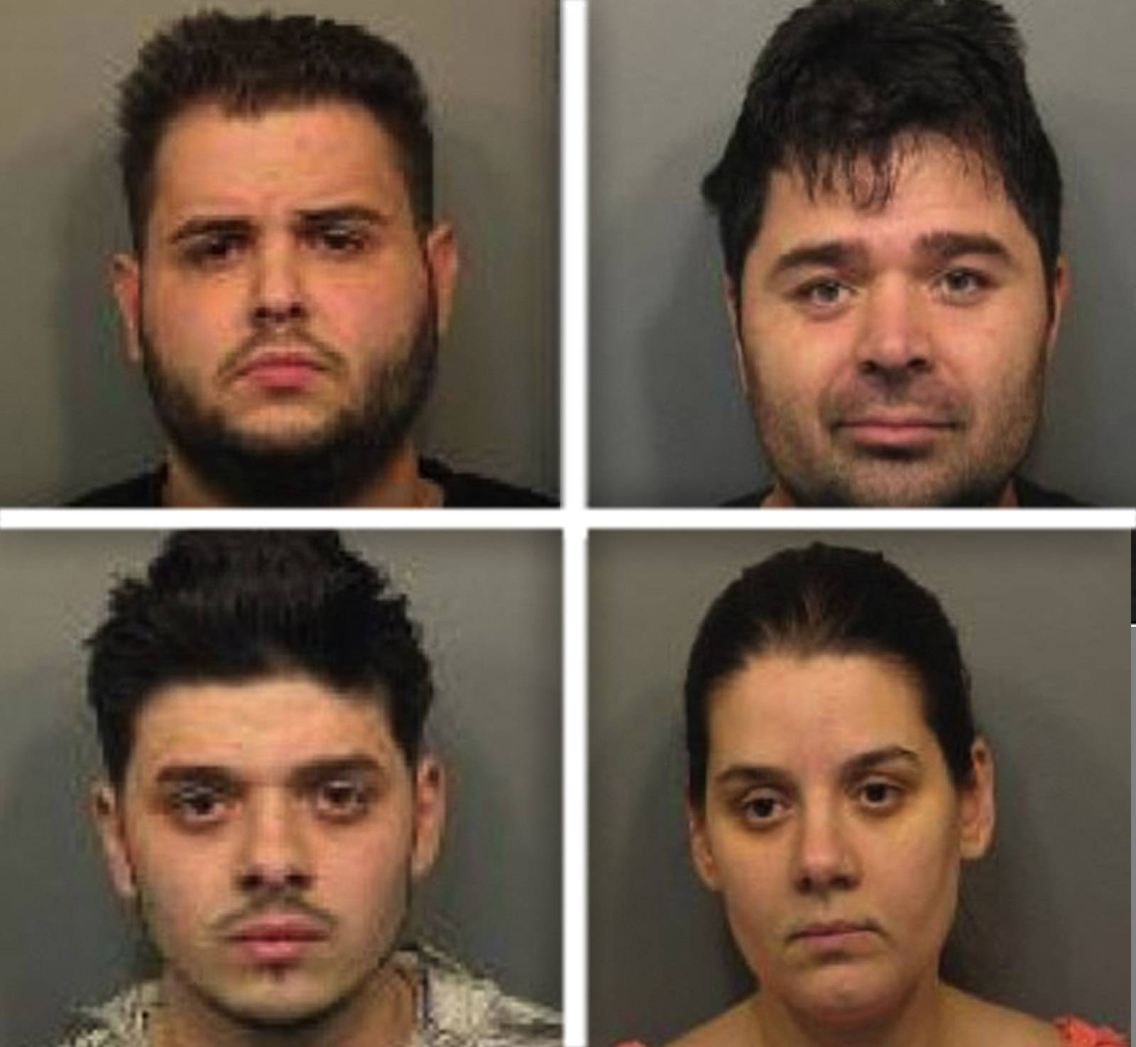 Clockwise from top left, Zvanko Dobobrov, Dragan Moro Owens, Natsasa Petrov and Kochak Owens were charged in a suburban shoplifting ring investigation.