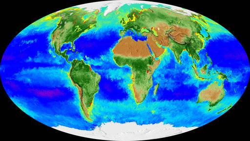 This image made from video released by NASA in November 2017 shows a Mollweide projection of the Earth and its biosphere derived from two decades of satellite data starting in September 1997 going through September 2017. By monitoring the color of reflected light via satellite, scientists can determine how successfully plant life is photosynthesizing. (NASA via AP)