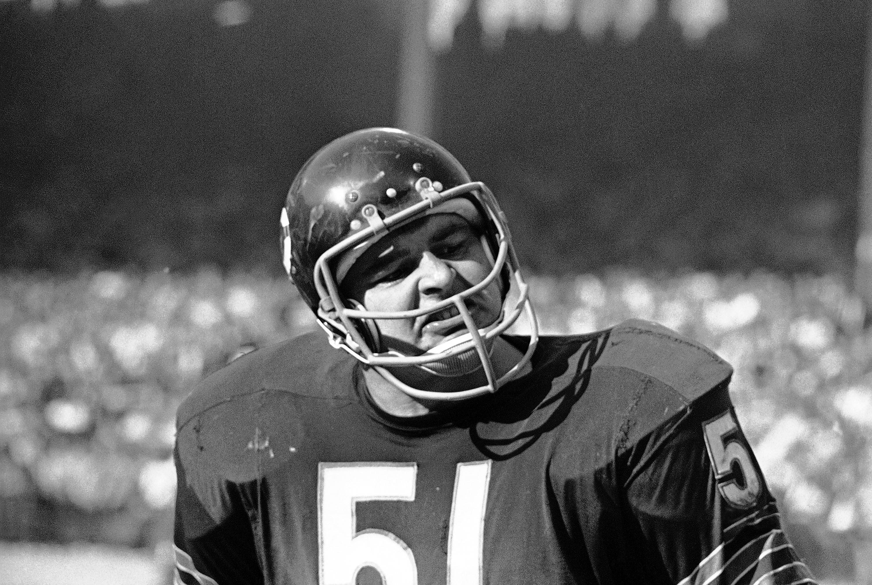 Chicago Bears' linebacker Dick Butkus, who was drafted out of the University of Illinois, will be honored with a bronze statue at it alma mater.