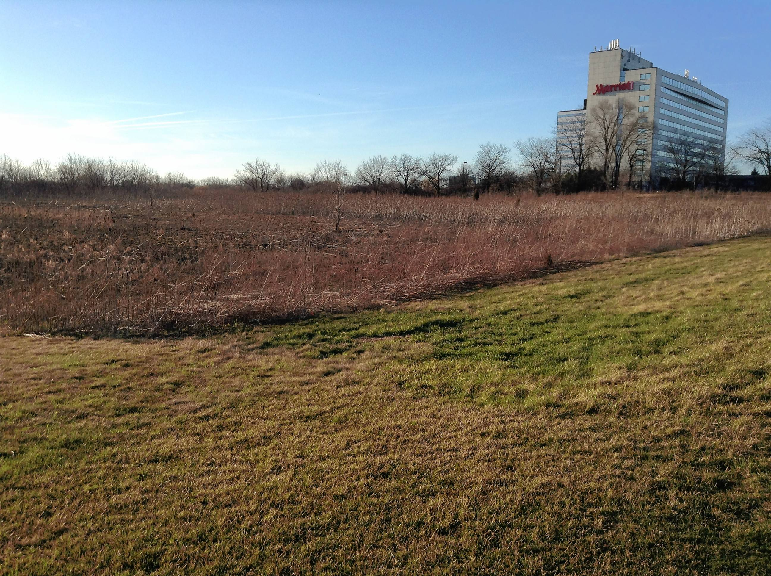 The site of an already approved Holiday Inn and Holiday Inn Express, north of the Chicago Marriott Schaumburg on Martingale Road in Schaumburg. The developer is seeking a Cook County tax incentive to restart the financially stalled project.