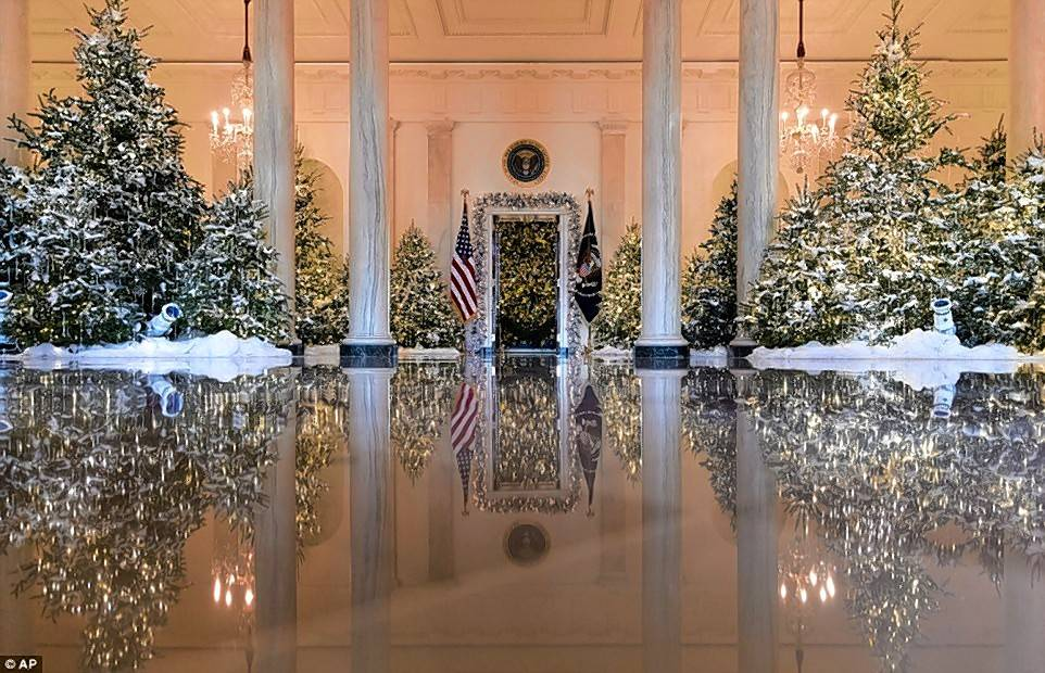 Kim Eggert of Park Ridge says she likes the way this official photo shows the beauty of the trees as you enter the White House.