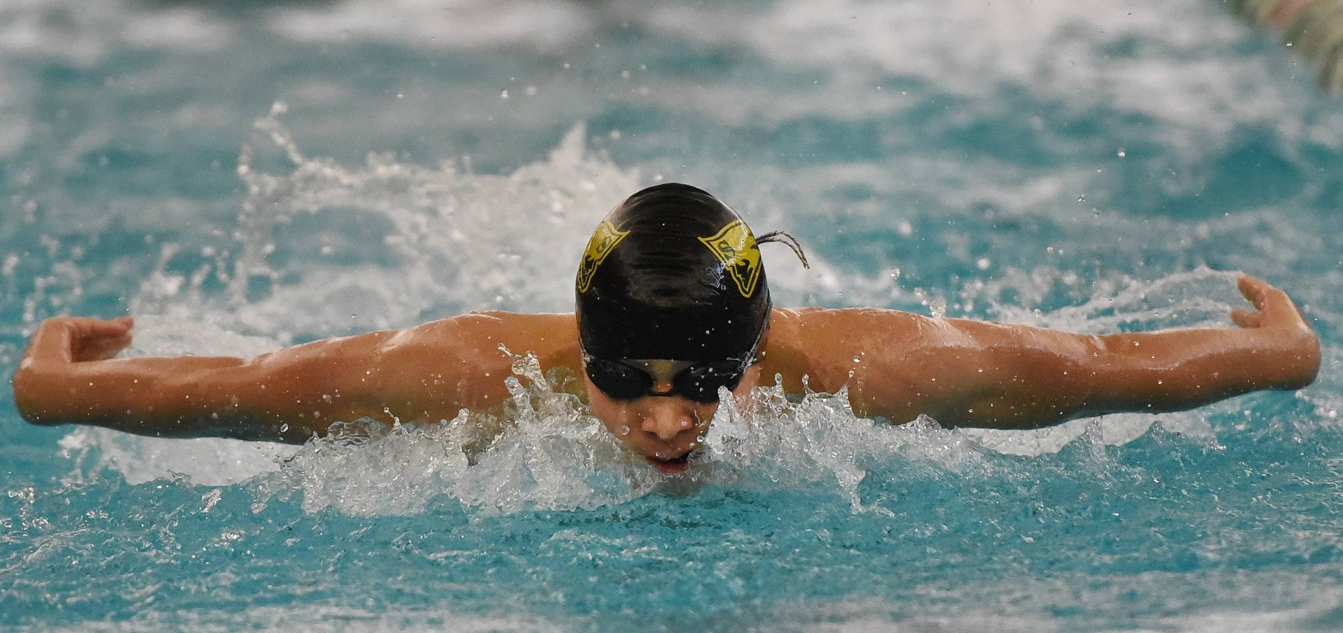 Daniel Ng, a state qualifier for Stevenson last year and a co-captain this year, competes in the 200 IM during the Lake County meet last season at Stevenson.