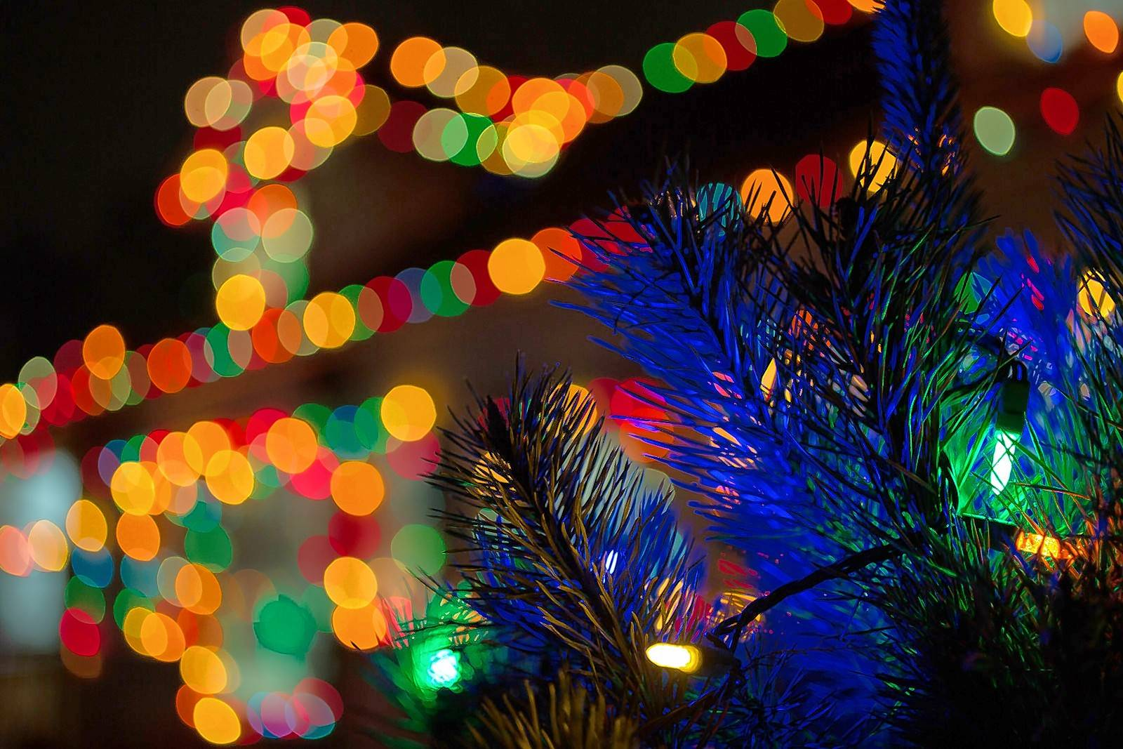 Holiday light displays, including one at Wheaton's Cosley Zoo, run throughout December.