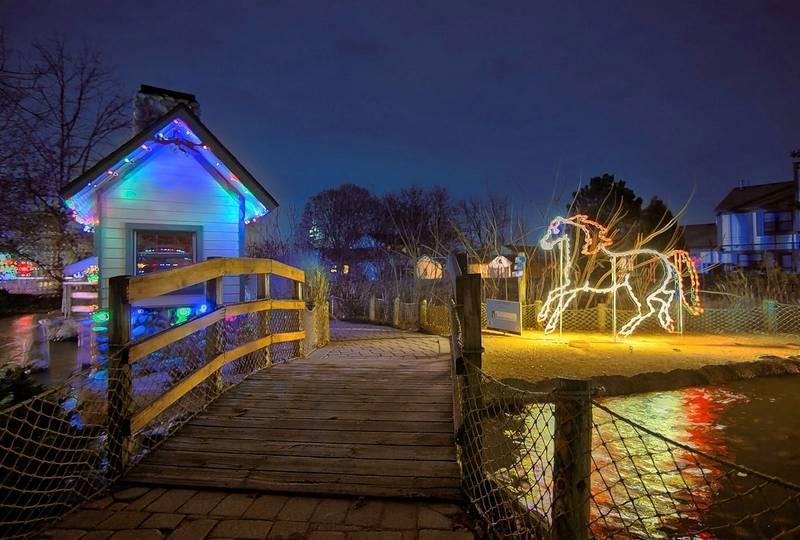 cosley zoos festival of lights runs through dec 30 in wheaton - Local Christmas Light Shows