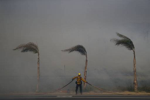 Palm trees sway in a gust of wind as a firefighter carries a water hose while battling a wildfire at Faria State Beach in Ventura, Calif., Thursday, Dec. 7, 2017. The wind-swept blazes have forced tens of thousands of evacuations and destroyed dozens of homes.