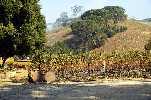This Wednesday, Dec. 6, 2017 photo shows media mogul Rupert Murdoch's 16-acre (6.5-hectare) Moraga Vineyards estate, where about 7 acres (2.8 hectares) of vines appeared to have been damaged after a wildfire swept through the Bel Air district of Los Angeles.