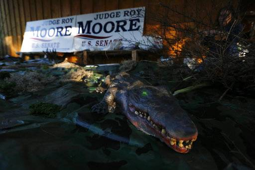 "An alligator is displayed after people decorated a ""swamp"" before a scheduled campaign rally for U.S. Senate candidate Roy Moore, Monday, Dec. 11, 2017, in Midland City, Ala."
