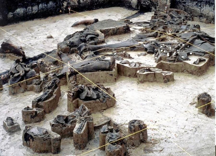 Discovery of mammoth remains near Kenosha rewrote history