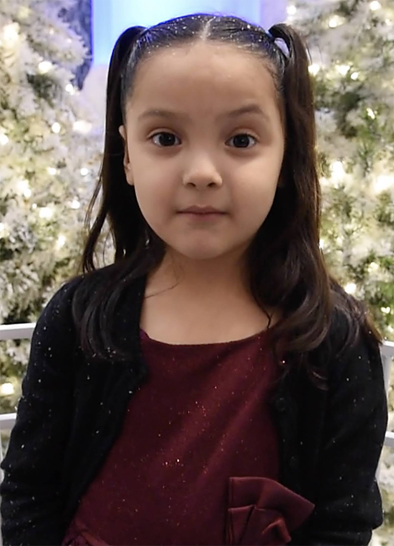 A reindeer is what Lizet Peralta, 5, of Lake in the Hills, hopes Santa will bring for her. She told him her wish at the Woodfield Mall in Schaumburg.
