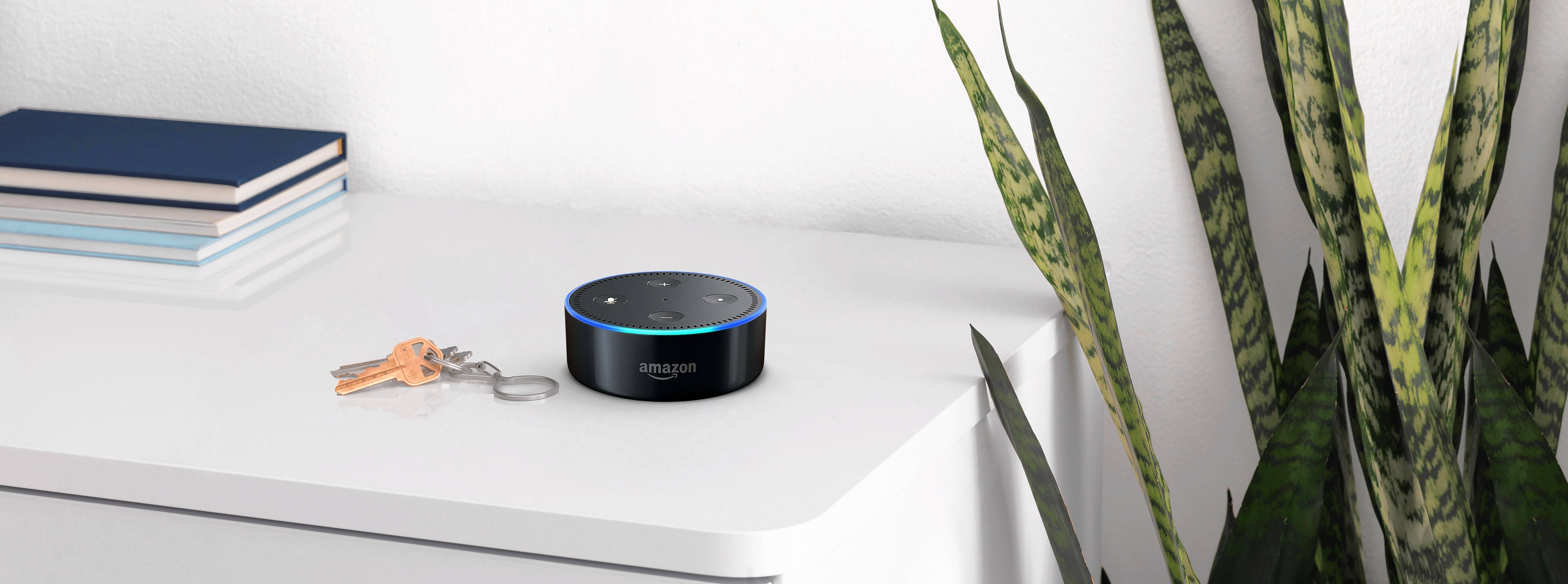 The Echo Dot was one of the top Amazon products purchased this holiday season.