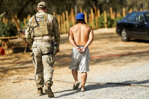 File - In this Sept. 29, 2017, file photo, a sheriff's deputy arrests a man for allegedly cultivating marijuana in unincorporated Calaveras County, Calif. A hodgepodge of law enforcement agencies throughout California will be responsible for enforcing new marijuana laws that make legal some, but not all, sales of the drug for recreational use on Jan. 1, 2018.