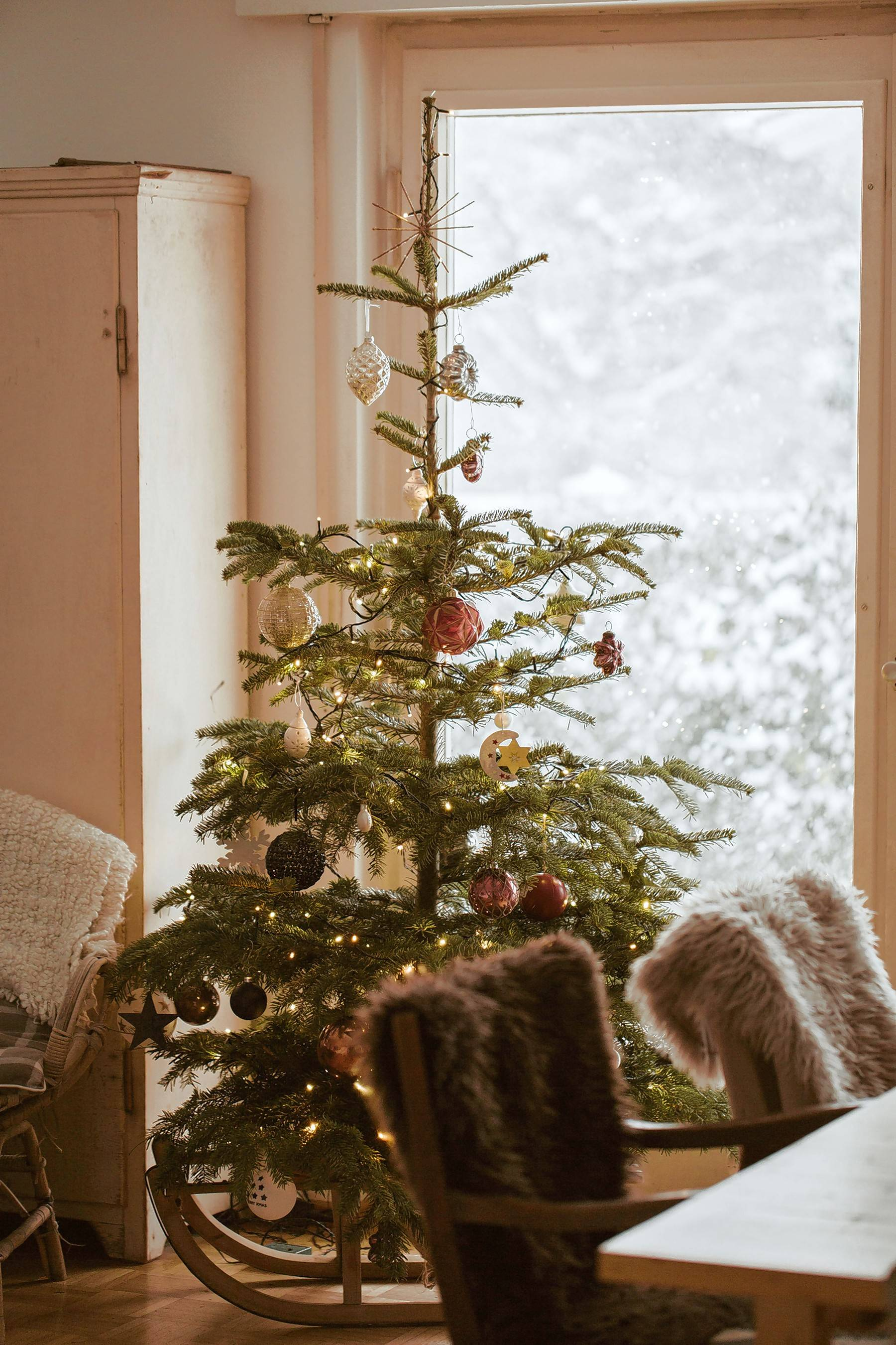 A shortage of Christmas trees will last for the next year or two.