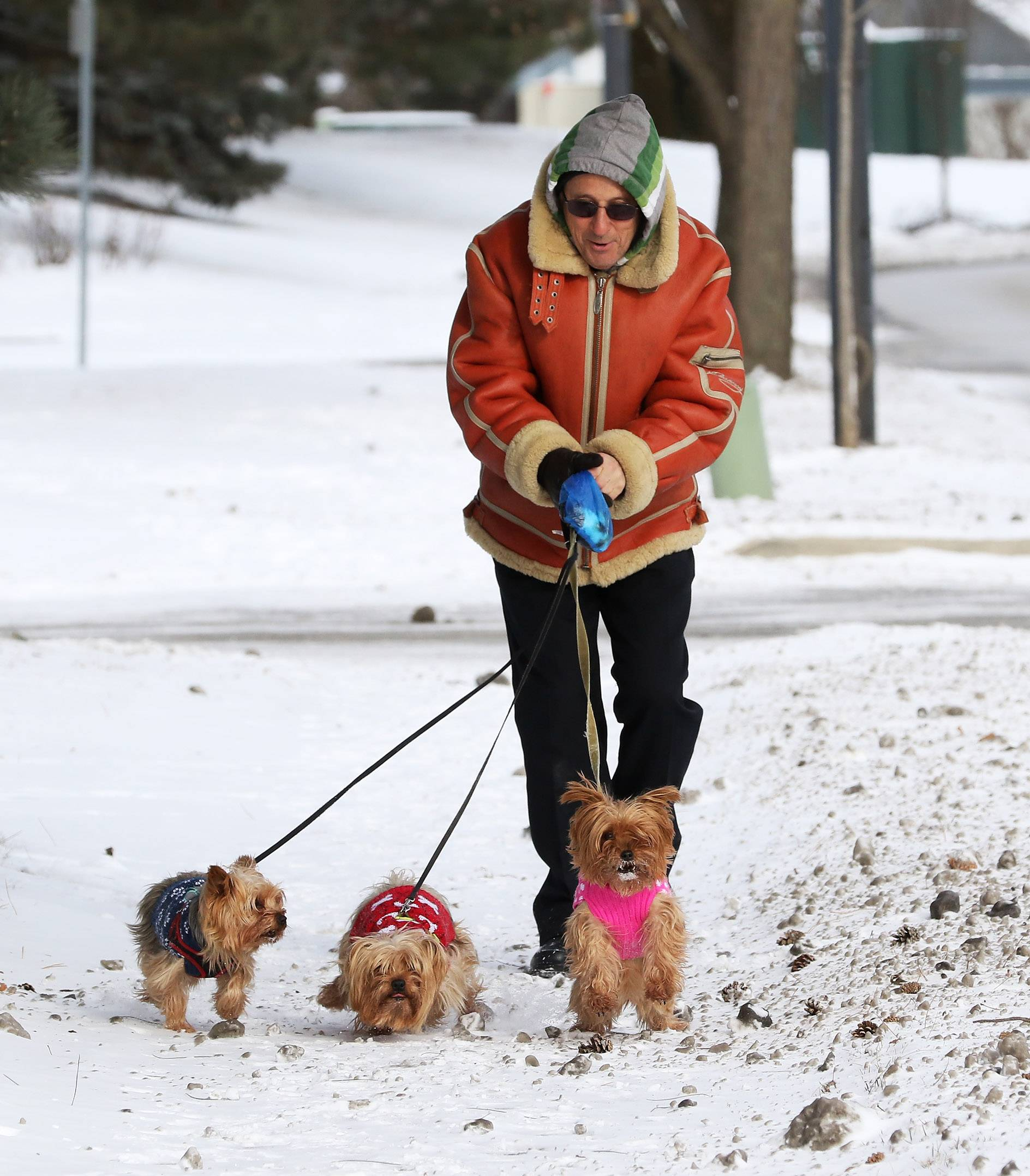 Despite the bitter cold, Felix Petrov of Vernon Hills walks his Yorkshire terriers, Cookie, Lucky, and Messi, around Century Park in Vernon Hills Sunday. Temperatures are expected to continue to be extremely cold throughout the rest of the week.