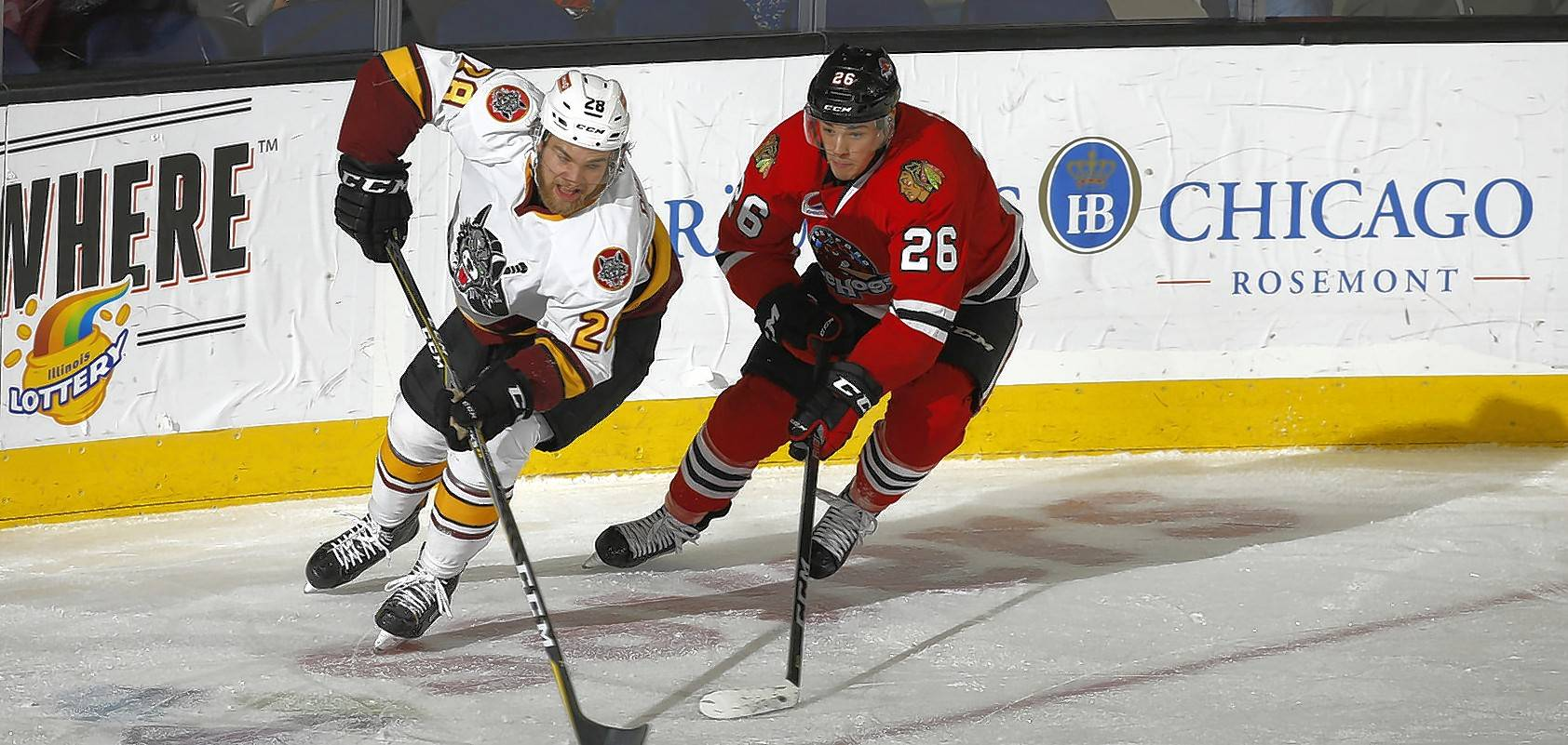 Alexandre Fortin (26), of the Rockford IceHogs, was the star of camp last season and constantly showcases his high-end speed but is still figuring out how to finish. He has 3 goals in 30 games.
