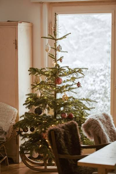 a shortage of christmas trees will last for the next year or two - How Long Can A Christmas Tree Last