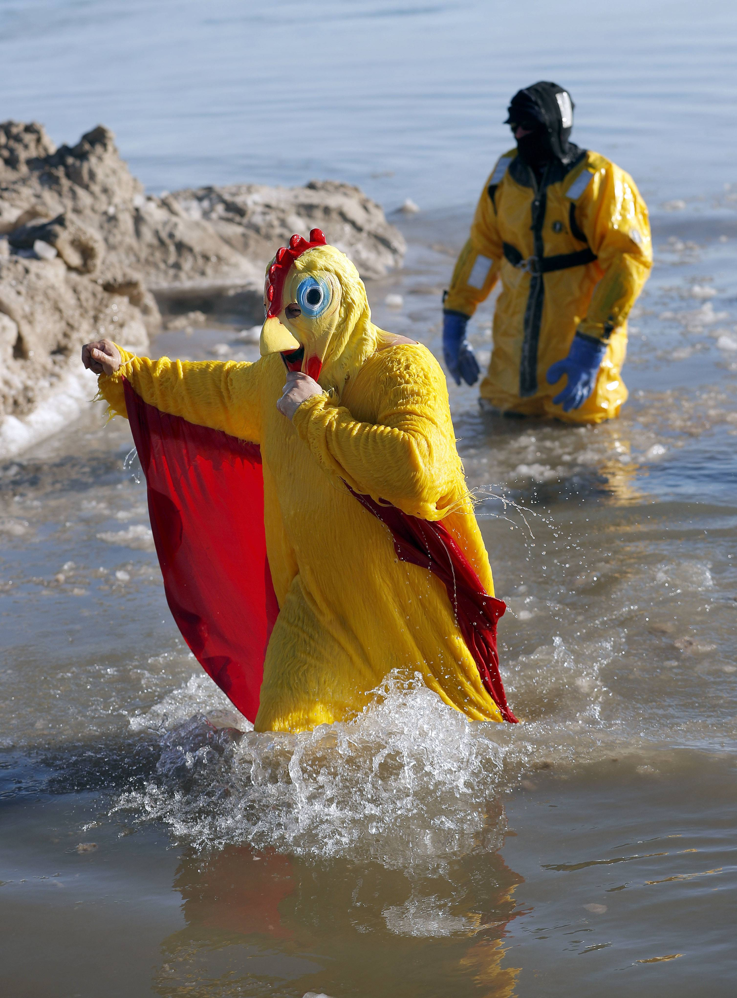 Maybe the chicken costume helped keep Tony Rocha of Waukegan warmer as he participates in the 19th annual Polar Plunge benefiting Special Recreation Services of Northern Lake County.