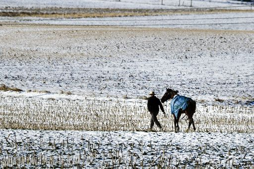 A farmer walks his horse across a baron field in freezing temperatures in Strasburg, Pa., Tuesday, Jan. 2, 2018.