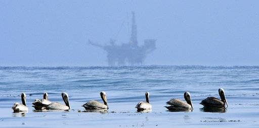 FILE - In this May 13, 2010 file photo, pelicans float on the water with an offshore oil platform in the background in the Santa Barbara Channel off the coast of Santa Barbara, Calif. The Trump administration on Thursday, Jan. 4, 2018 moved to vastly expand offshore drilling from the Atlantic to the Arctic oceans with a plan that would open up federal waters off the California coast for the first time in more than three decades. The Channel is one of those areas.