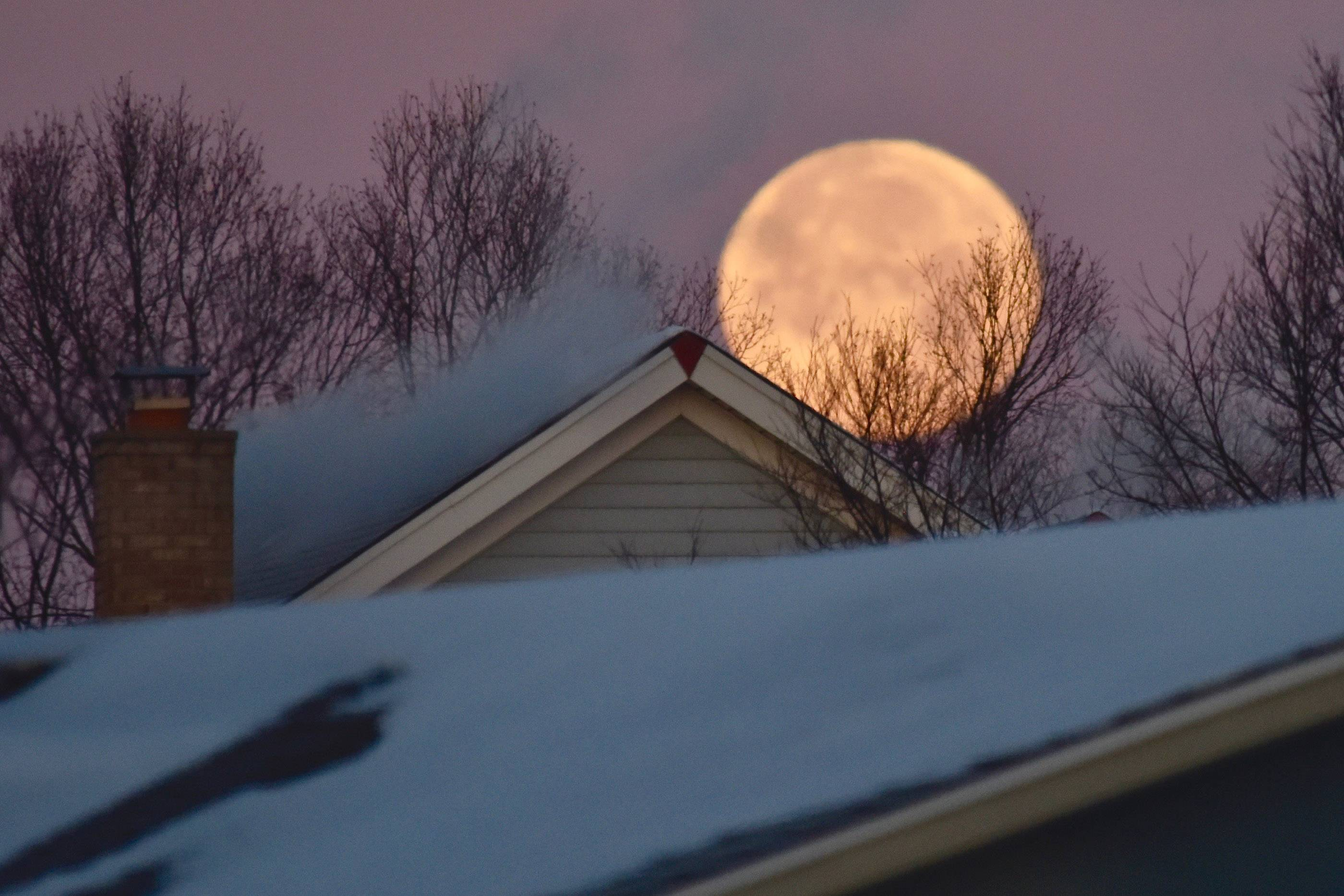 "A ""Super Moon"" sets over the Elk Grove Village rooftops in the early morning hours as temperatures hover below zero on January 2. The visual size of the moon is highlighted by the smoking chimney, roof lines and trees in the foreground."