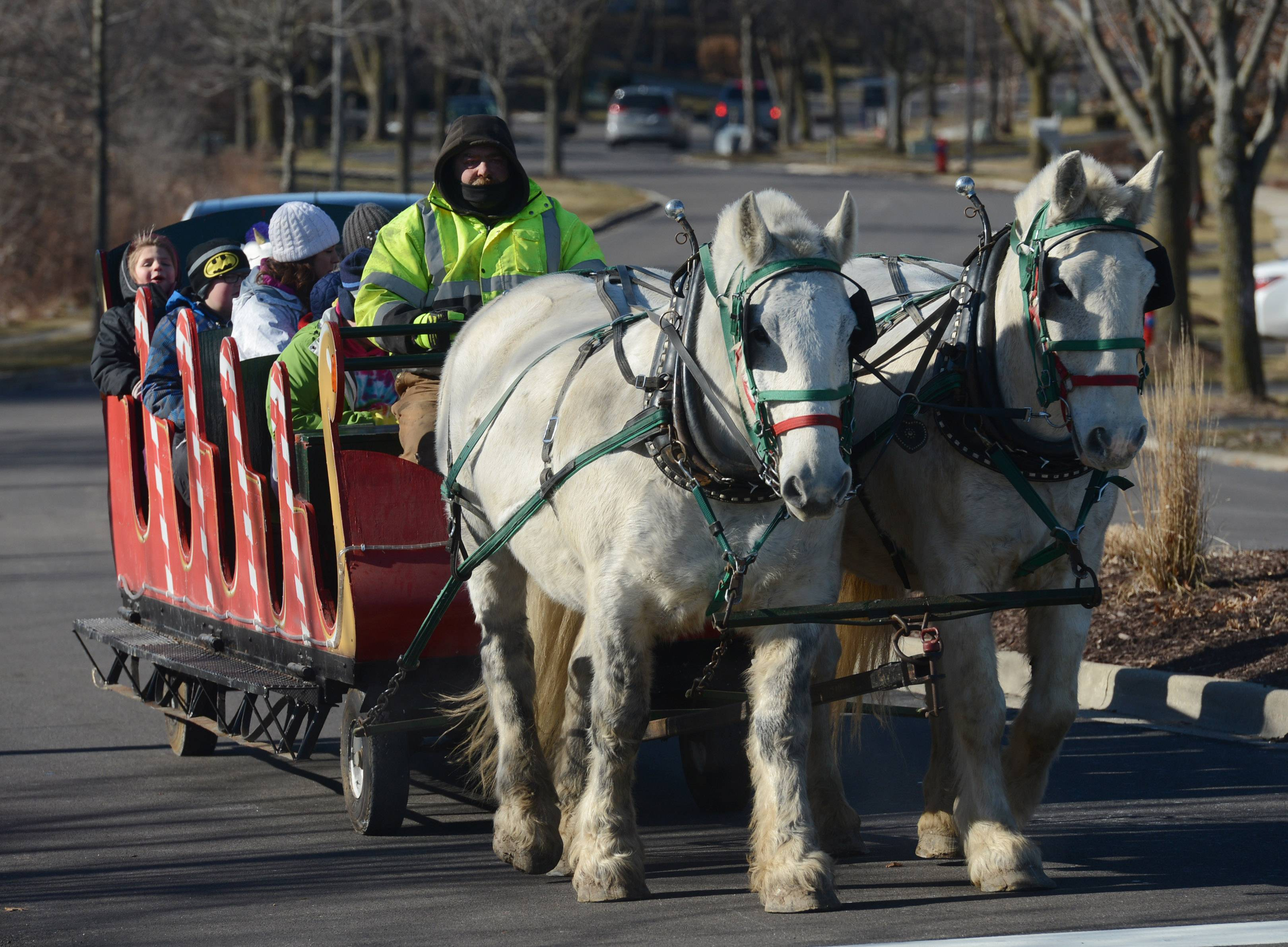 Horses pull a sleigh during Frosty Fest at Bittersweet Golf Club in Gurnee Saturday.