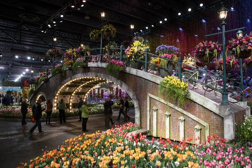 Flower show's focus on water lets visitors dive into spring