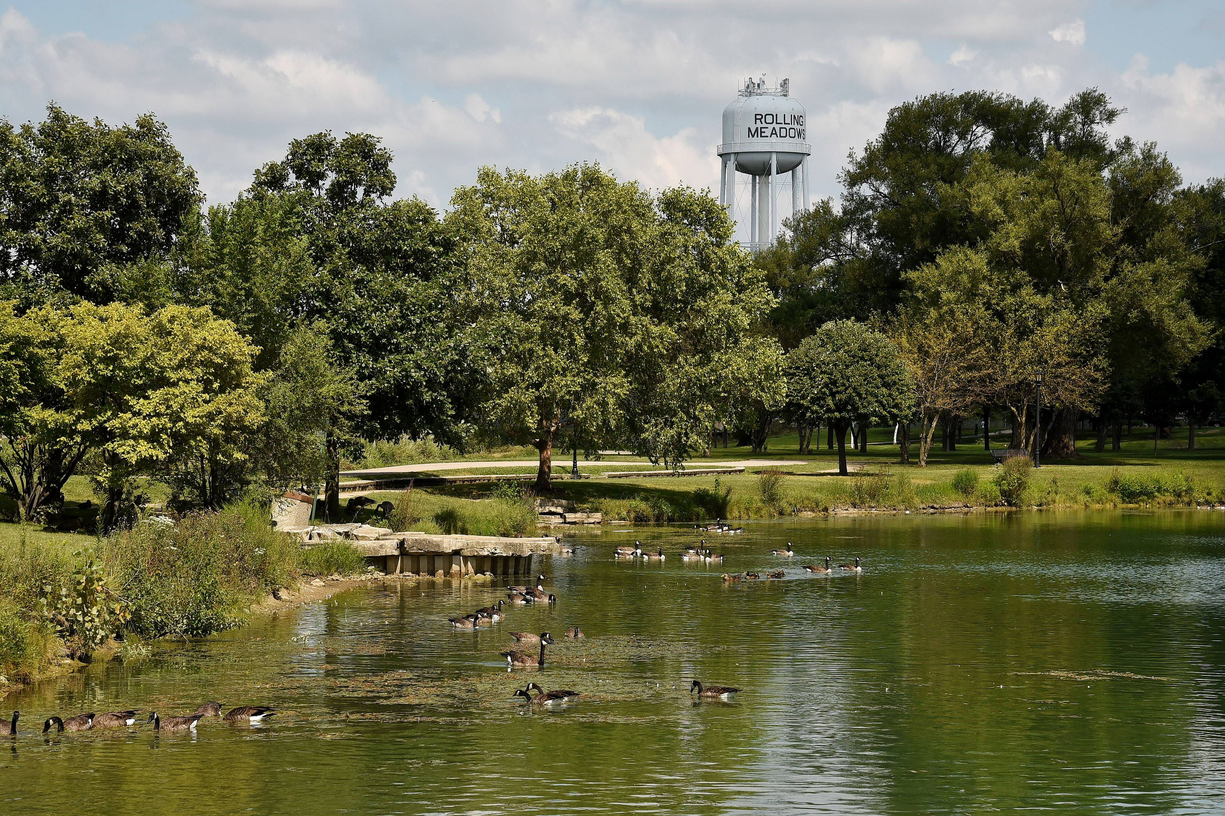 An application to install a 75-foot cellphone tower in Kimball Hill Park in Rolling Meadows is pending, city officials say. Meanwhile, a proposal to reduce the permitted height of antennas citywide to 45 feet was rejected.