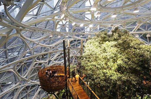 "Guests sit in an area of the Amazon Spheres known as ""the nest,"" on the day of the Spheres' grand opening, Monday, Jan. 29, 2018, in Seattle."