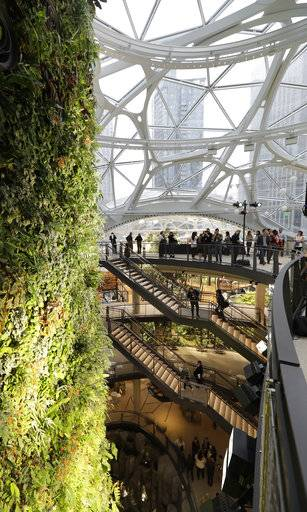 Gathering spaces and a plant-filled wall are shown before a grand opening ceremony for the Amazon Spheres, Monday, Jan. 29, 2018, in Seattle. The plant-filled geodesic domes will serve as a work- and gathering space for Amazon.com employees.