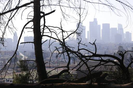 FILE - In this Dec. 14, 2017 file photo, Los Angeles skyline is seen through burned trees after a brush fire erupted in the hills in Elysian Park in Los Angeles. California's water managers are carrying out their mid-winter snowpack survey as the winter's dry spell persists. The Department of Water Resources on Thursday, Feb. 1, 2018, will carry out manual measurements of the Sierra Nevada snowpack.
