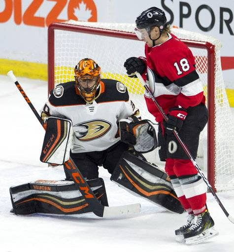 Ottawa Senators left wing Ryan Dzingel tries to screen Anaheim Ducks goaltender Ryan Miller on a shot during the second period of an NHL hockey game Thursday, Feb. 1, 2018, in Ottawa, Ontario. (Adrian Wyld/The Canadian Press via AP)
