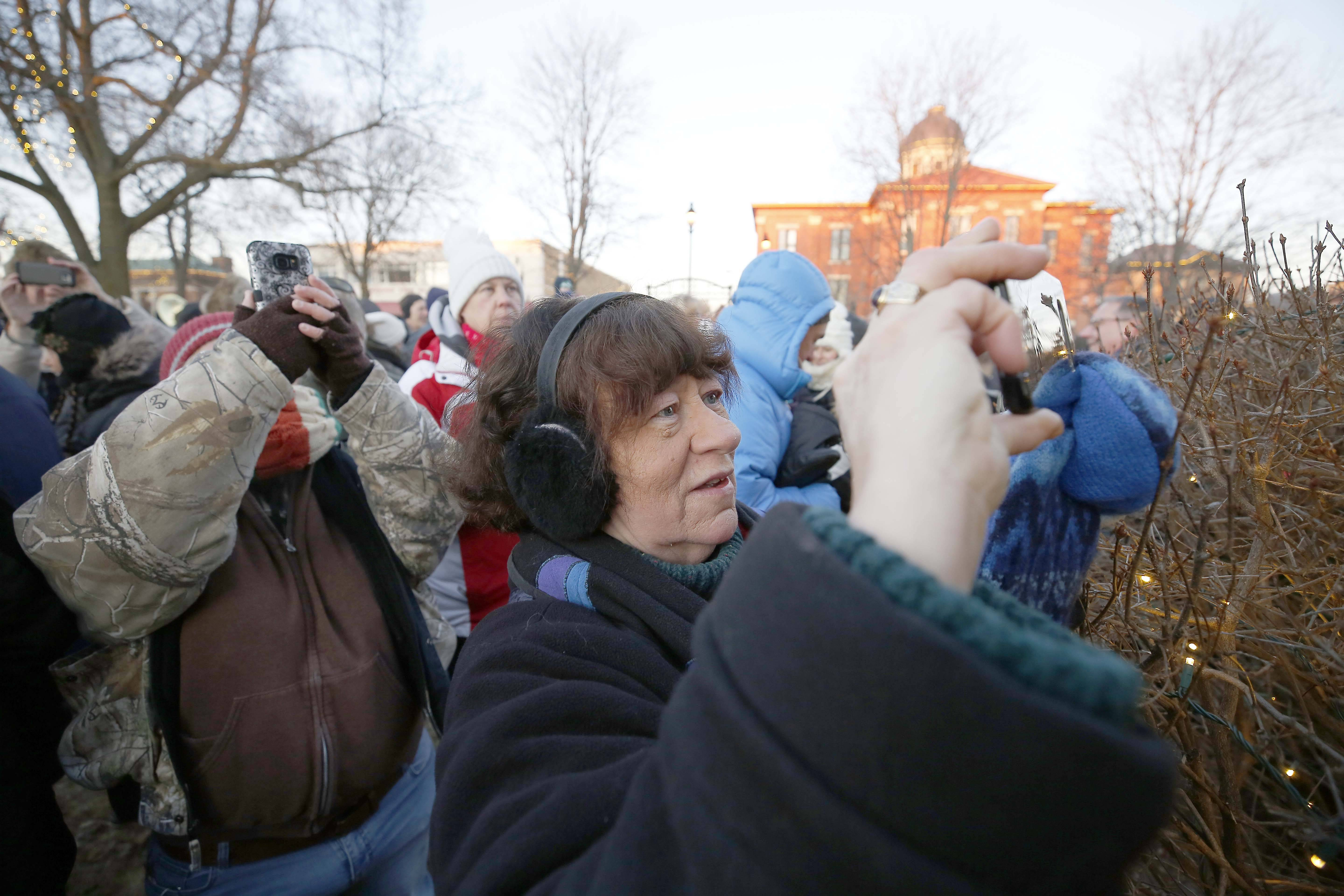 "Carol Oberstubbersing of Woodstock has been attending Groundhog Day festivities since its inception the year after the movie ""Groundhog Day"" was made. Woodstock Willie saw his shadow after emerging from his slumber Friday in Woodstock."