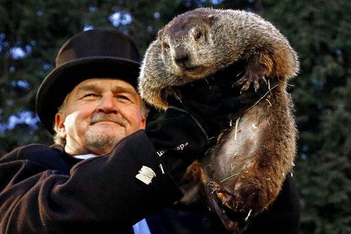 FILE- In this Feb. 2, 2017, file photo, Groundhog Club handler John Griffiths holds Punxsutawney Phil, the weather prognosticating groundhog, during the 131st celebration of Groundhog Day on Gobbler's Knob in Punxsutawney, Pa. Punxsutawney Phil's handlers are set to announce at sunrise Friday, Feb. 2, 2018, what kind of weather they say the rodent is predicting for the rest of winter.