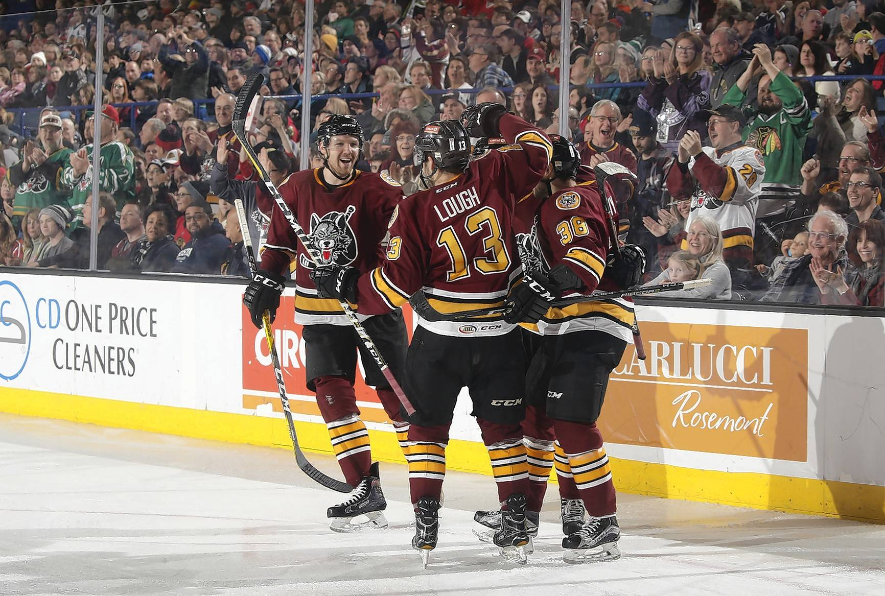 The Chicago Wolves, who play in Rosemont, have been a staple on the local professional sports scene for nearly a quarter-century.