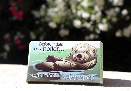 "This undated photo provided by the Center for Biological Diversity in Tucson, Ariz., shows a condom package designed by Lori Lieber from the center's ""Endangered Species Condoms"" series, featuring rhyming maxims and Shawn DiCriscio's illustrations of animal species threatened by population growth. As part of the center's ""Pillow Talk"" program, hundreds of the condoms will be distributed for free during evening Valentine's Day events for adults on Friday, Feb. 9, 2018, at the Carnegie Science Center in Pittsburgh and the San Diego Natural History Museum. (Center for Biological Diversity via AP)"