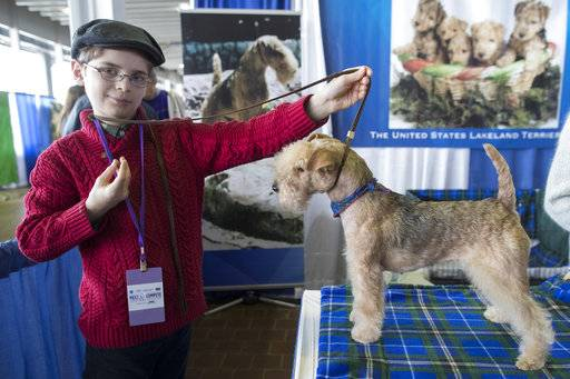 In this Saturday, Feb. 10, 2018, photo, Fenric Towell poses for a photo with his lakeland terrier Missy during the meet the breeds companion event to the Westminster Kennel Club Dog Show in New York.